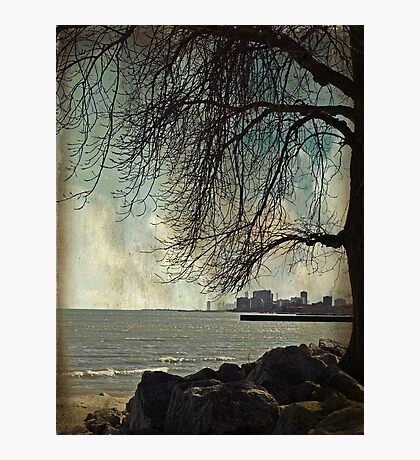 city under a tree Photographic Print
