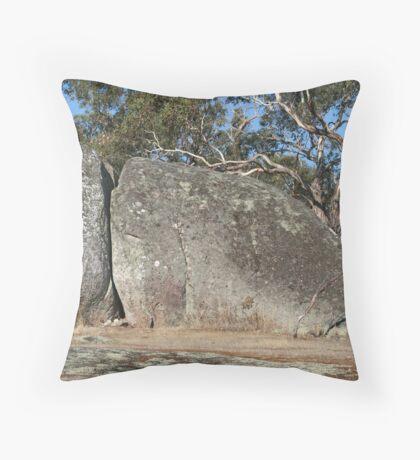 Seal Rock #1 Throw Pillow