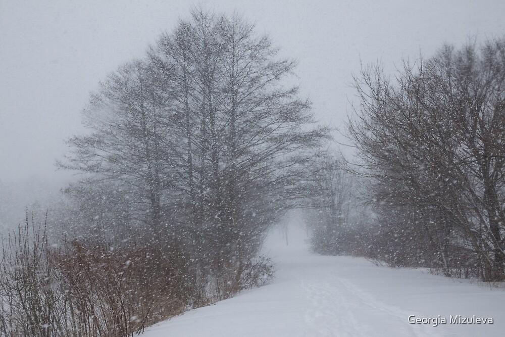 Snowstorm Magic by Georgia Mizuleva