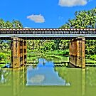 Bridge over the Wingecarribee by Steven Guy