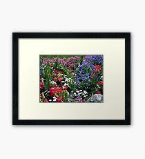 Spring Medley Framed Print