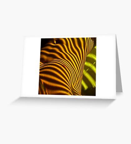venetian colour Greeting Card