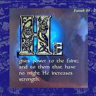 Power to the Weak by Patricia Howitt