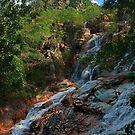 Hervey Range Waterfall - Townsville by Paul Gilbert