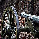 Alabama Artillery Shiloh by Bob Moore