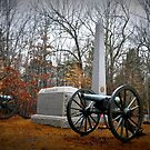 Illinois Battery in Shiloh Cemetary by Bob Moore