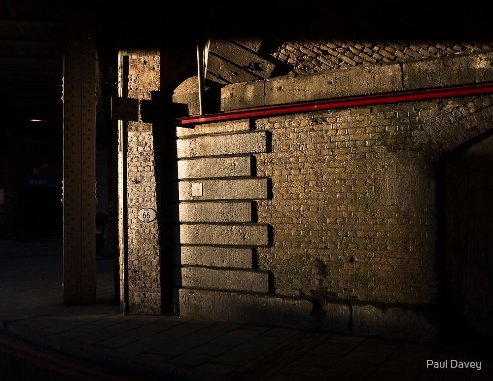 Sunlight and Shadows by Paul Davey