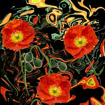 Poppies with abstract by LudaNayvelt
