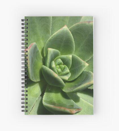 Green Faced Spiral Notebook