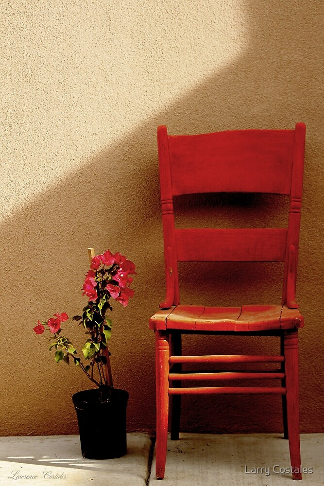Flower and Chair by Larry Costales