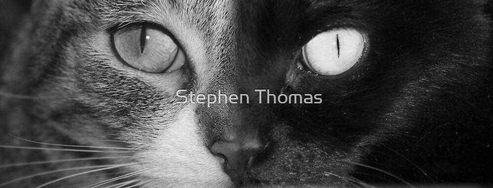 Midscoonighter by Stephen Thomas