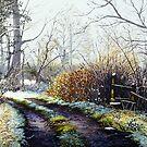 A light dusting of snow by Paula Oakley