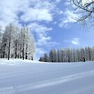 Lonely skier by Steve plowman