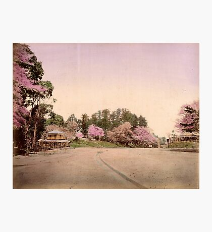 Uyeno garden, Tokyo Photographic Print