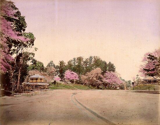 Uyeno garden, Tokyo by Fletchsan