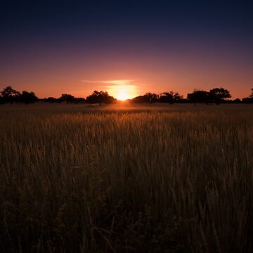 Colourful Kalahari Sunsets by lightwanderer