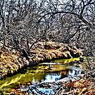 By The Creek by Pat Moore