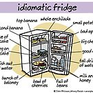 Idiomatic fridge by WrongHands