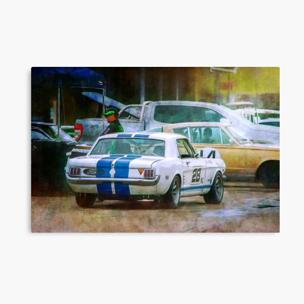 Mustang in the Paddock Canvas Print