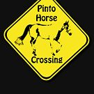 Pinto Crossing by Samantha Dean