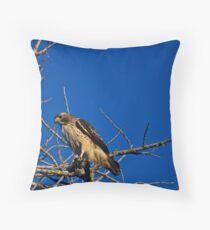 Raptor Throw Pillow