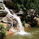 waterfall by Sheila McCrea