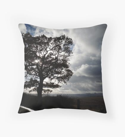 November Country Lane Throw Pillow