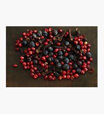 Spice Berries Photographic Print