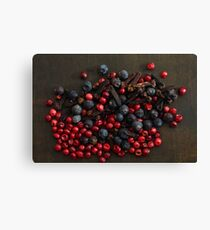 Different spice berries  Canvas Print