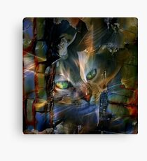 Cat Glancing Canvas Print