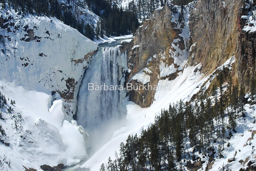 The Winter Melt - Lower Yellowstone Falls  by Barbara Burkhardt