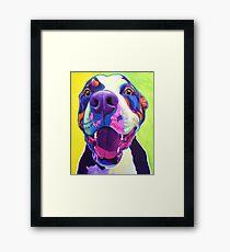Happy Pit Bull - Smiling Colorful Pitbull Dog Framed Print