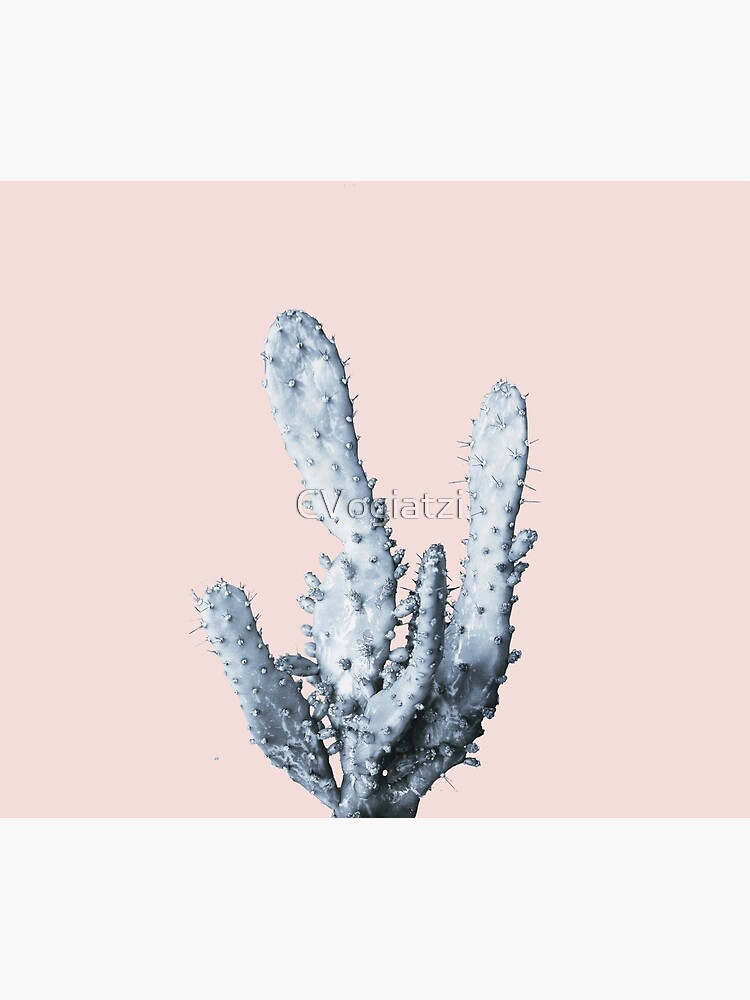 Cactus collection BL-I by CVogiatzi