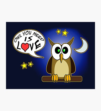 Owl you need is love! Photographic Print