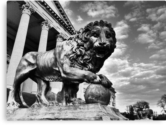 Proud Lion by Jessox