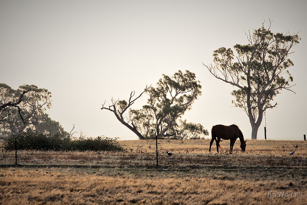 Drought of '09 by Jim Worrall