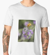 Insect studying flower Men's Premium T-Shirt
