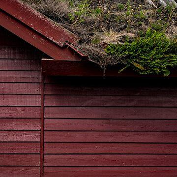 The Scandinavian House by arc1