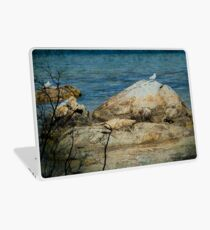Seagull on a Rock Laptop Skin
