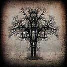 Symmetry Tree #3 by amira