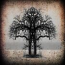 Symmetry Tree #4 by amira