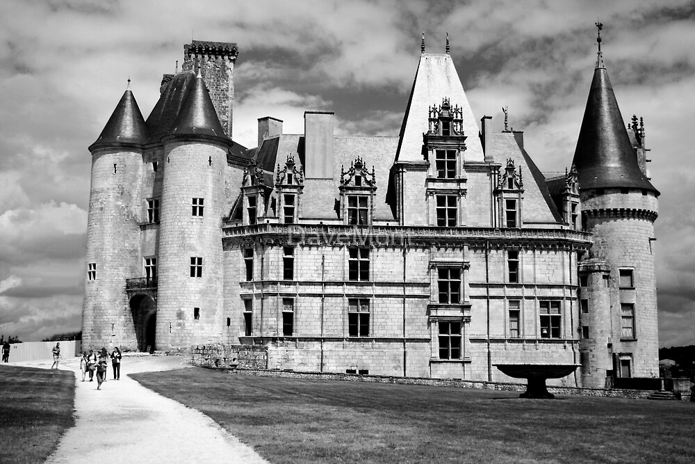 Castle - France - B&W by DaveMont