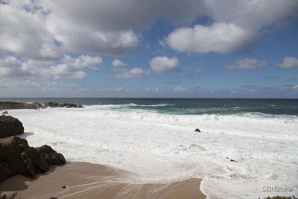 Beach, Sky and Ocean by SBNature