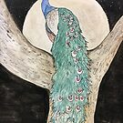 Regal peacock by Brandy Heinrich