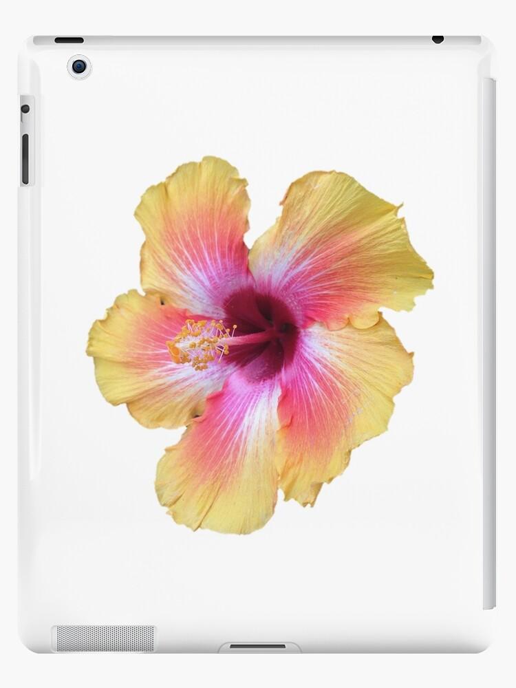 Tropical flower (orange and pink) by RobinSucksAtArt