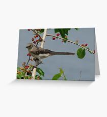 Mulberry Denizen Greeting Card