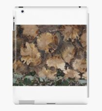 Tree stumps iPad Case/Skin