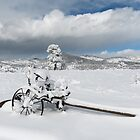 Iron waits for spring by Greg Birkett