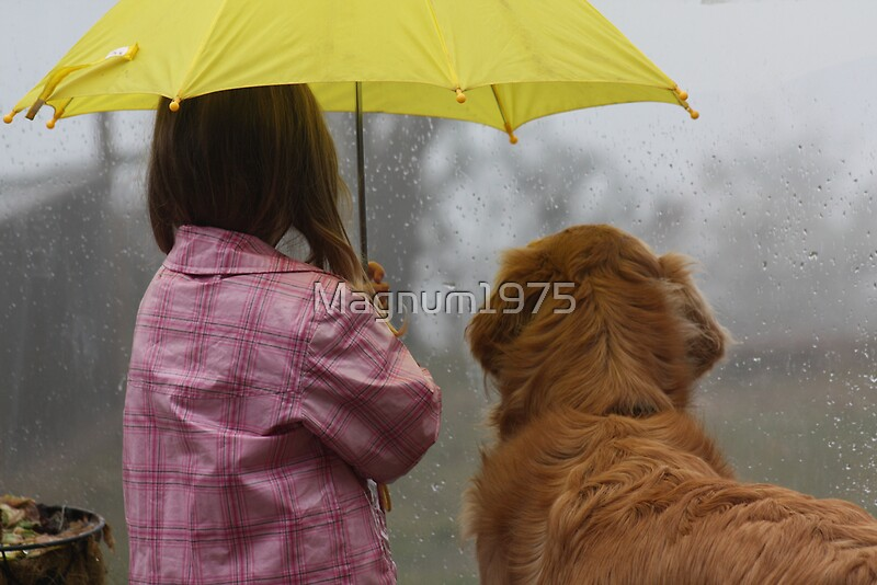 Quot Sharing The Umbrella 2 Quot By Magnum1975 Redbubble