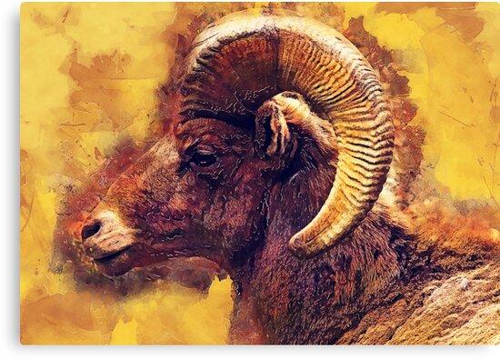 Bighorn sheep #sheep #animals by JBJart